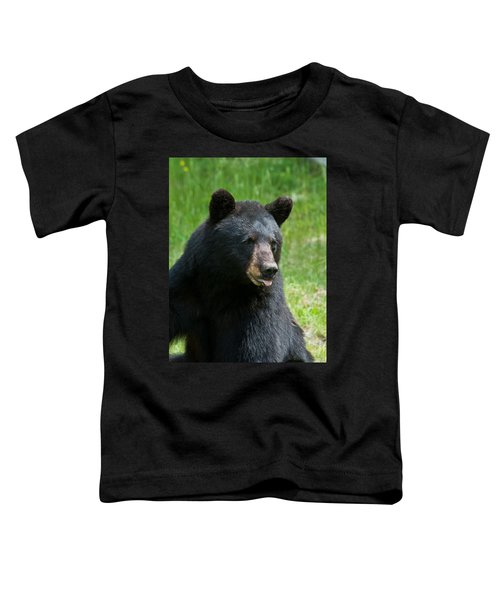Hot Day In Bear Country Toddler T-Shirt