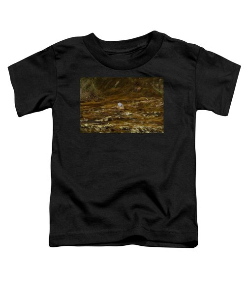 House In The Valley Toddler T-Shirt