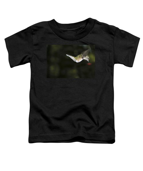 Hovering Beauty Toddler T-Shirt