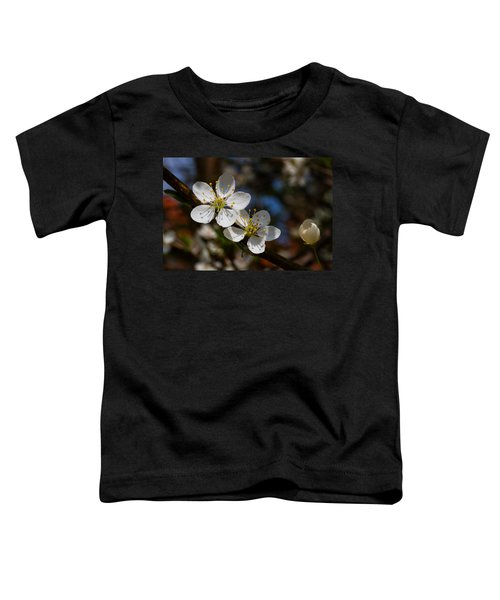Hungry For Sun Toddler T-Shirt