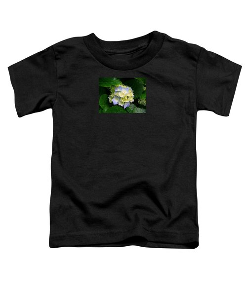 Hydrangeas Toddler T-Shirt