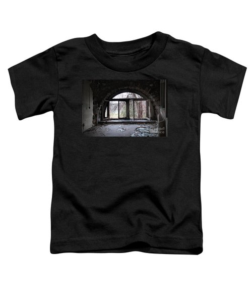 Inside Looking Out Toddler T-Shirt