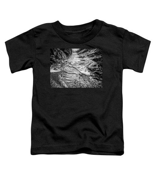 It's A Rush Browns Beach  Toddler T-Shirt