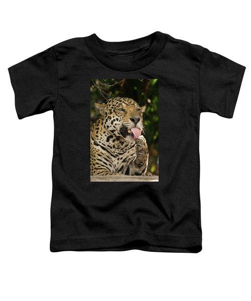 Jaguar Panthera Onca Licking Its Paw Toddler T-Shirt