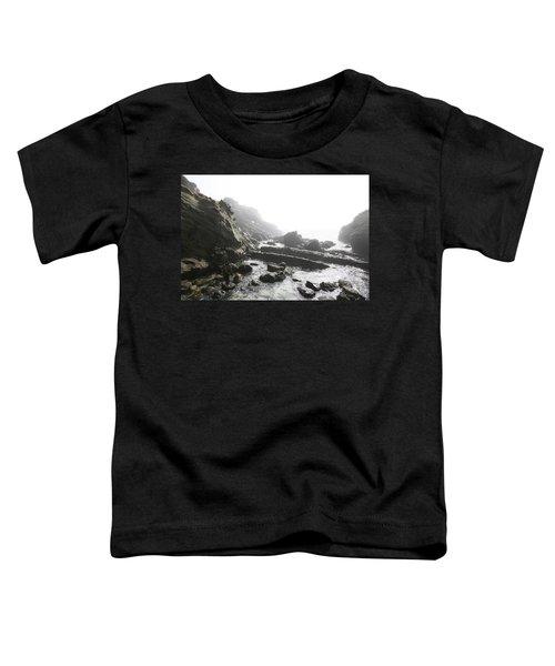 Jesus Christ In Angel Mist Toddler T-Shirt
