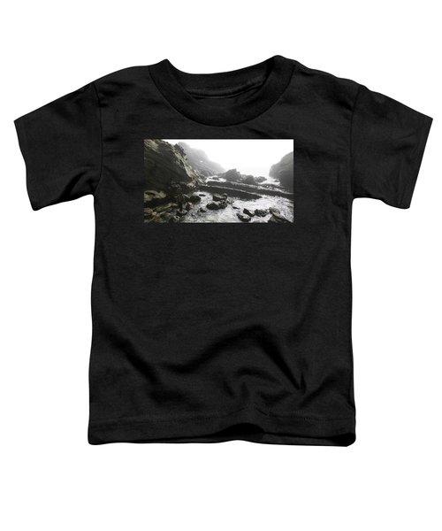 Jesus Christ- Walking Among Angel Mist Toddler T-Shirt