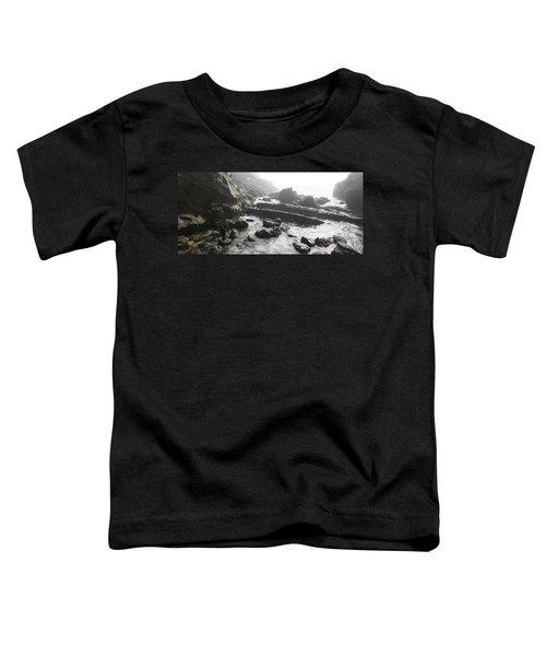 Jesus Christ- Walking With Angels Toddler T-Shirt