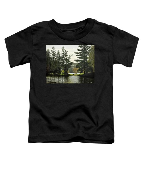 Killarney Toddler T-Shirt