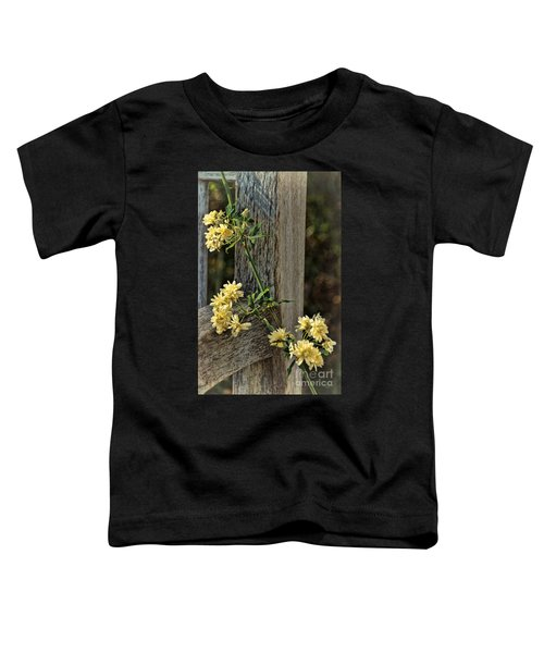Lady Banks Rose Toddler T-Shirt by Peggy Hughes