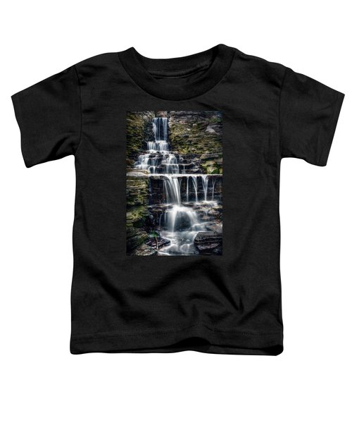 Lake Park Waterfall Toddler T-Shirt