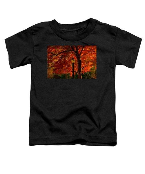 Lantern In Autumn Toddler T-Shirt