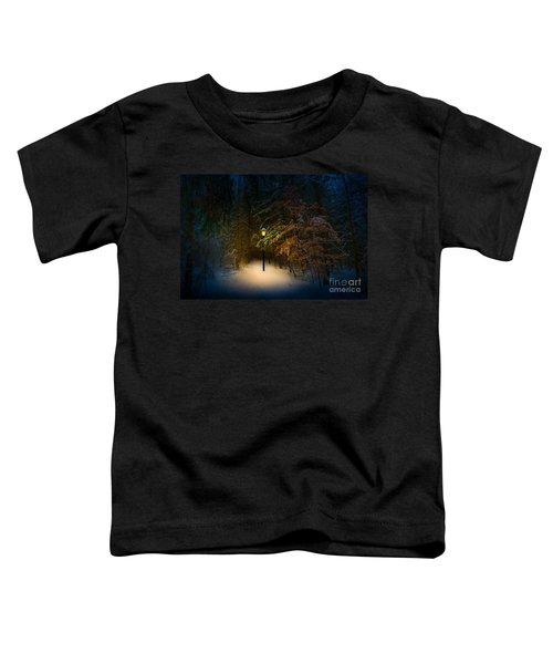 Lantern In The Wood Toddler T-Shirt