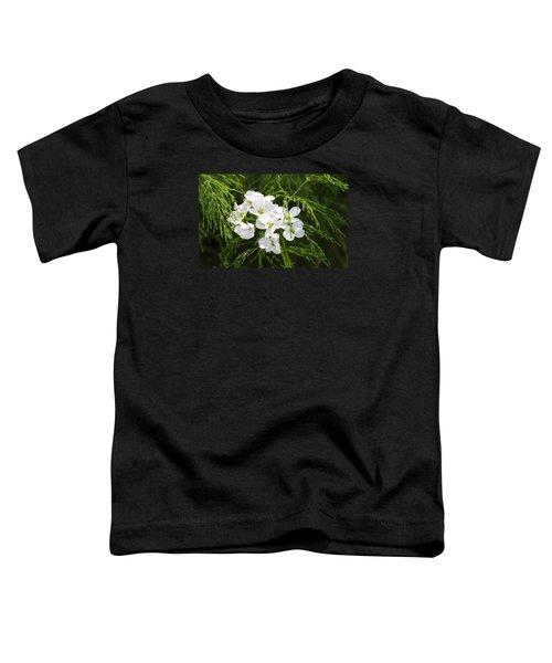 Light Of The White Toddler T-Shirt
