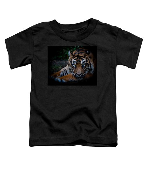Like My Eyes? Toddler T-Shirt