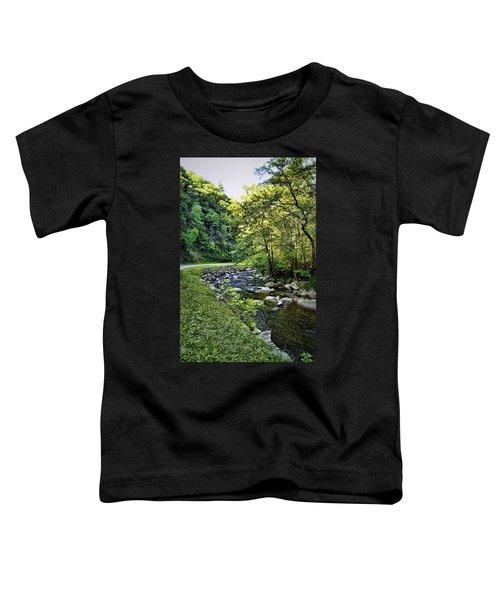 Little River Road Toddler T-Shirt