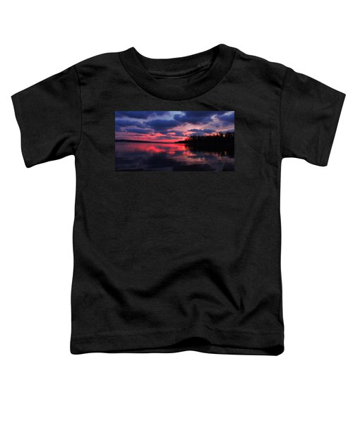 Locust Sunset Toddler T-Shirt