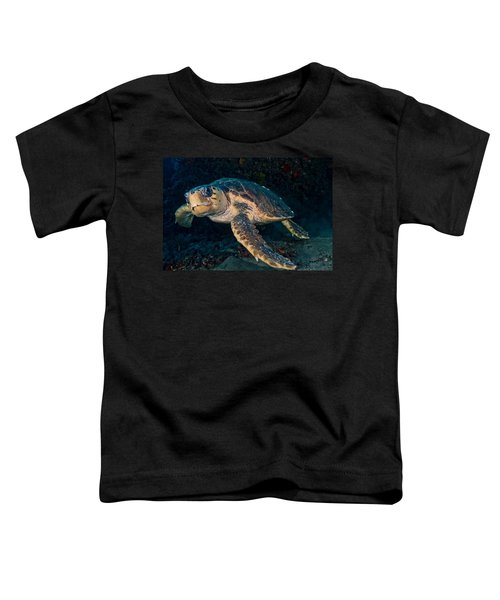 Loggerhead Turtle Under Ledge Toddler T-Shirt