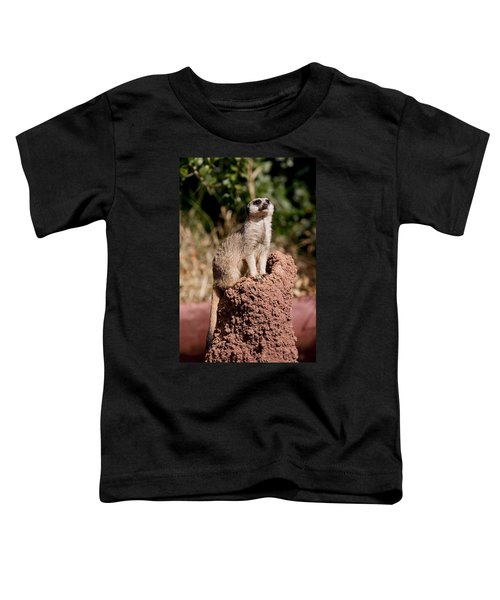 Lookout Post Toddler T-Shirt by Michelle Wrighton