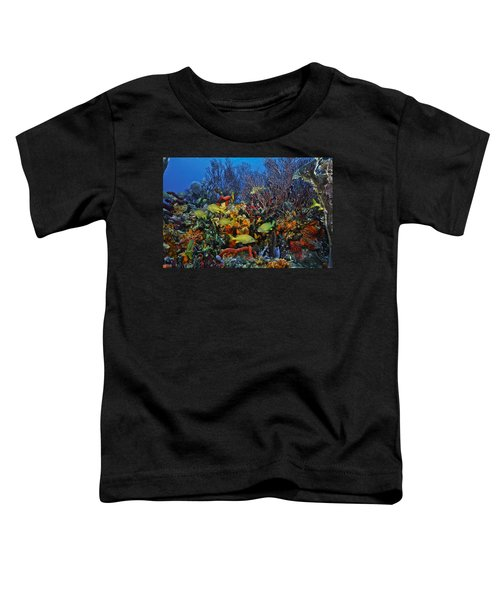 Lynns Reef On A Perfect Day Toddler T-Shirt