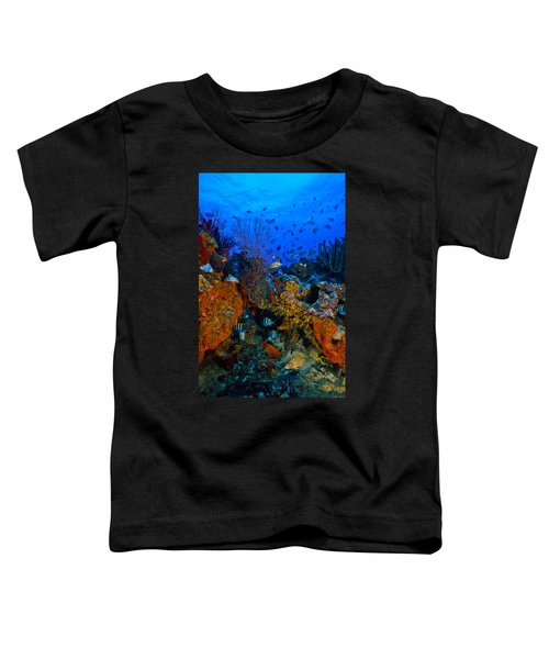 Lynns Reef Toddler T-Shirt