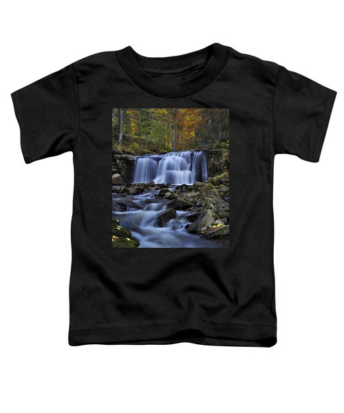 Magnificent Waterfall Toddler T-Shirt