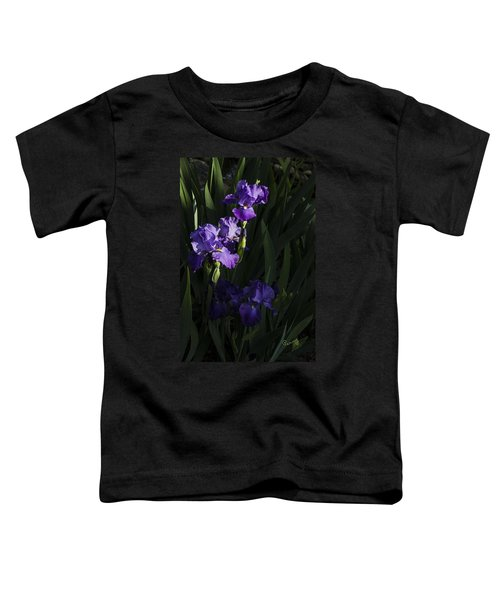 Majestic Spotlight Toddler T-Shirt