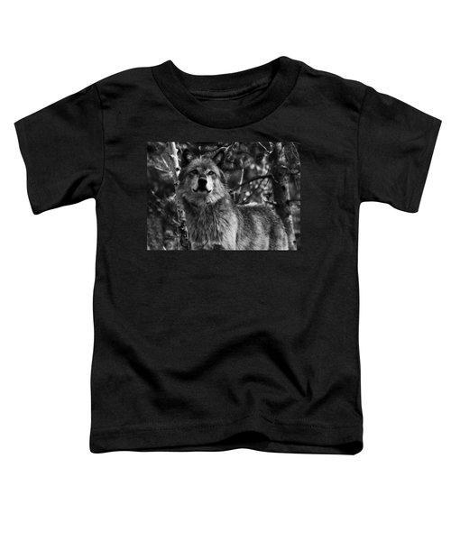 Majesty Toddler T-Shirt