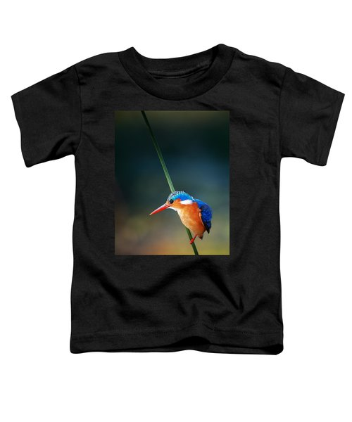 Malachite Kingfisher Toddler T-Shirt