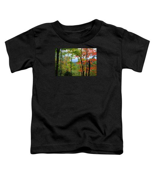 Maples Against Lake Superior - Tettegouche State Park Toddler T-Shirt