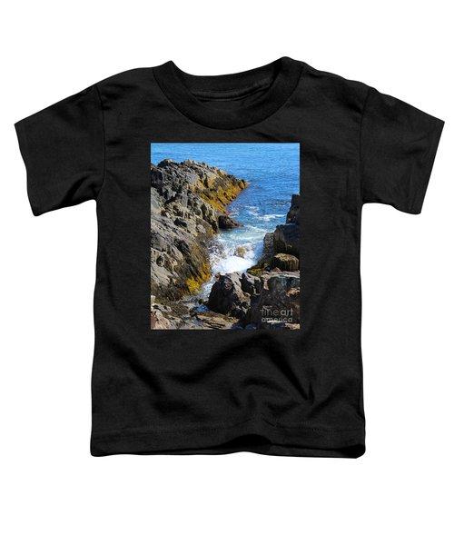 Marginal Way Crevice Toddler T-Shirt