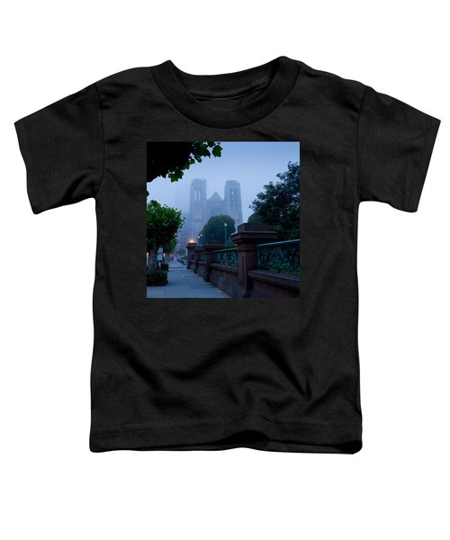 Misty Blues Toddler T-Shirt
