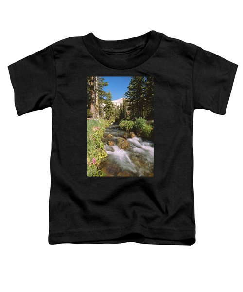 Mitchell Creek Toddler T-Shirt