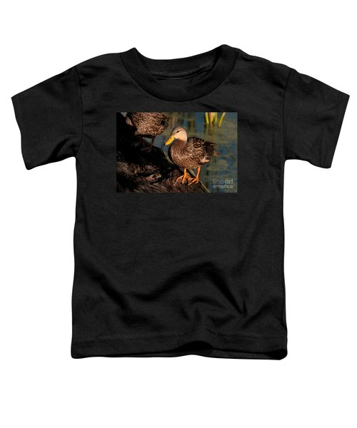 Mottled Duck Toddler T-Shirt