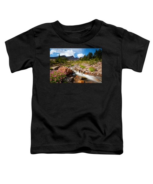 Mountain Runoff Toddler T-Shirt