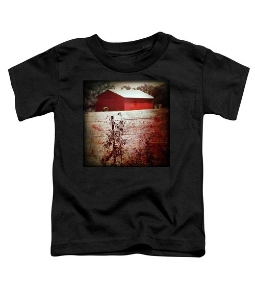 Murder In The Red Barn Toddler T-Shirt