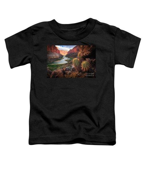 Nankoweap Cactus Toddler T-Shirt by Inge Johnsson