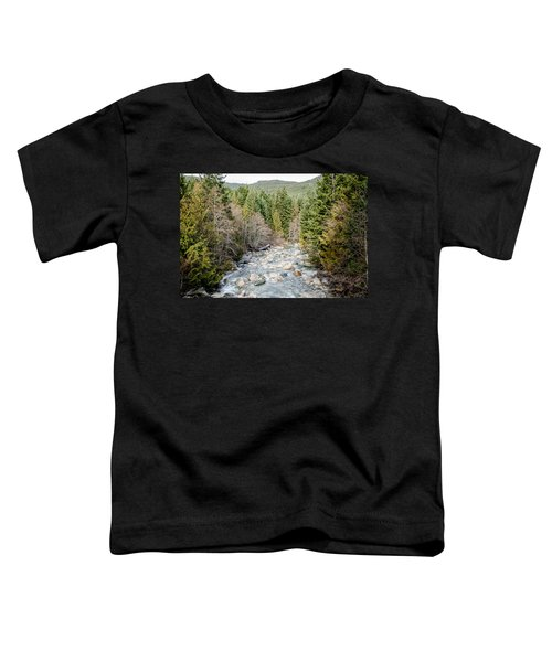 Island Stream Toddler T-Shirt