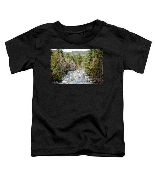 Island Stream Toddler T-Shirt