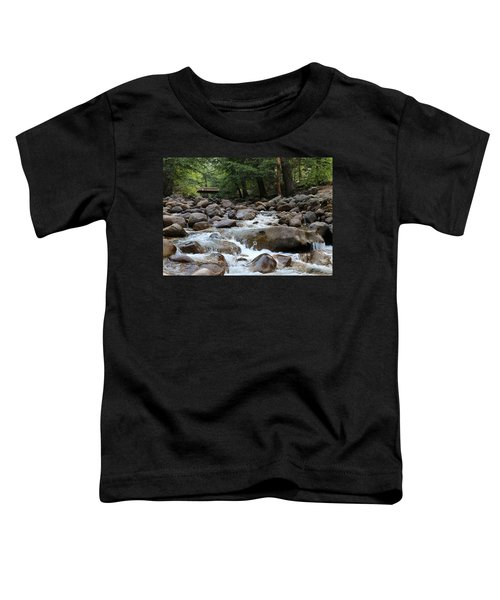 Nature's Flow  Toddler T-Shirt