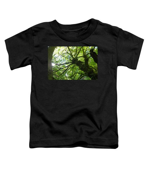 Old Growth Tree In Forest Toddler T-Shirt