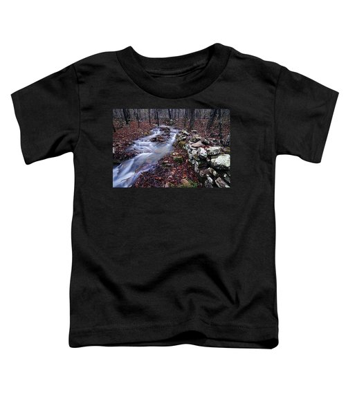 Old Homestead Toddler T-Shirt