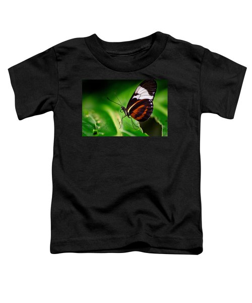 On The Wings Of Beauty Toddler T-Shirt