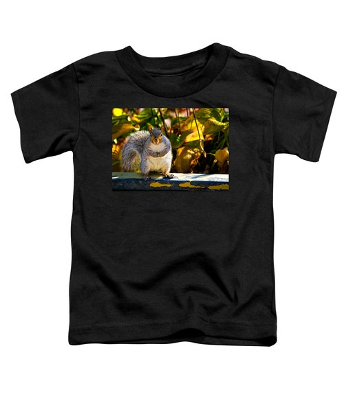 One Gray Squirrel Toddler T-Shirt