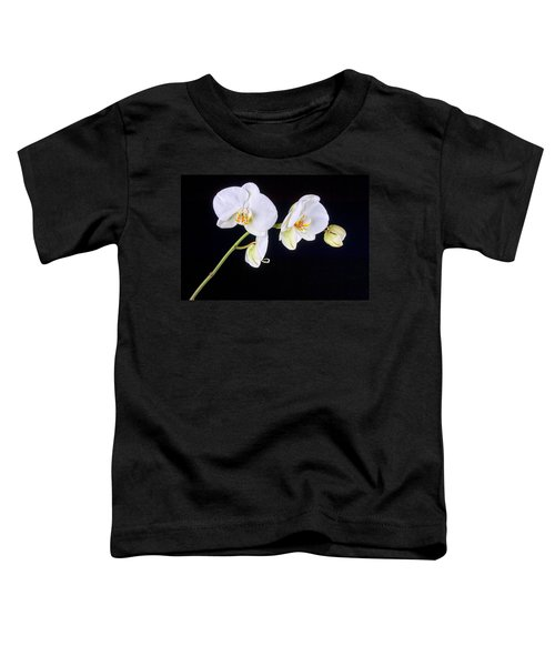 Orchid 2a Toddler T-Shirt