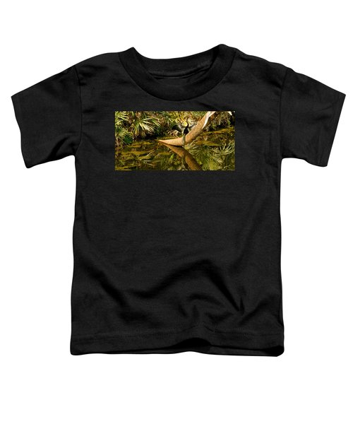 Oriental Darter Anhinga Melanogaster Toddler T-Shirt by Panoramic Images
