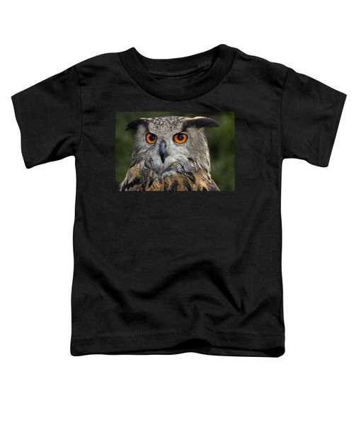 Owl Bubo Bubo Portrait Toddler T-Shirt