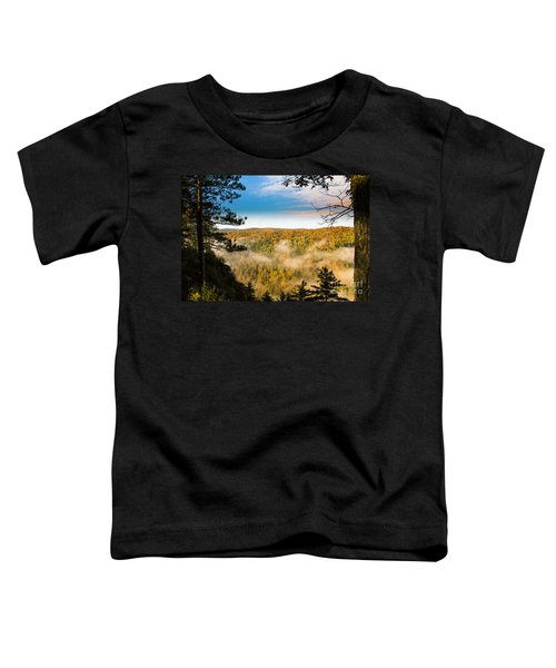 Pa Grand Canyon Toddler T-Shirt