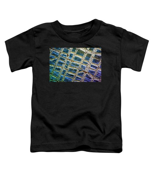 Painted Streets Number 1 Toddler T-Shirt