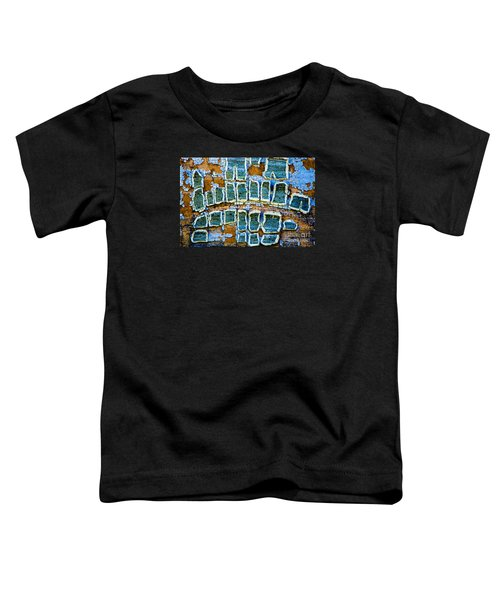 Painted Windows Number 2 Toddler T-Shirt
