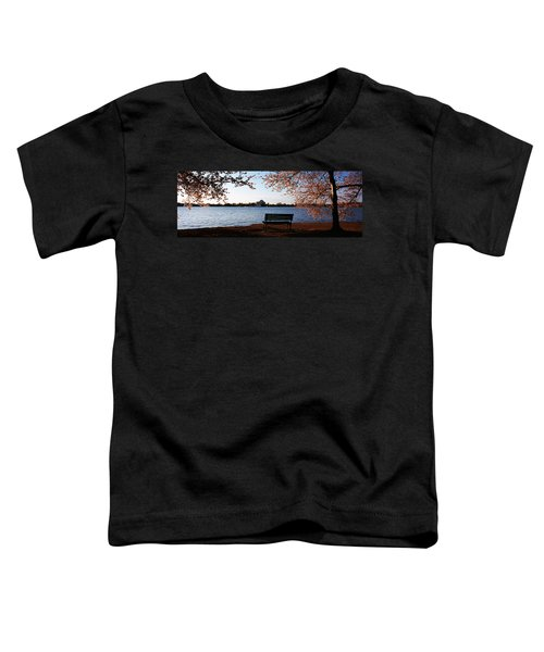 Park Bench With A Memorial Toddler T-Shirt by Panoramic Images